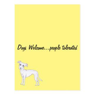 Los perros acogen con satisfacción… a la gente tarjeta postal