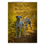 Los perros dálmatas gozan de su tarjeta del retiro