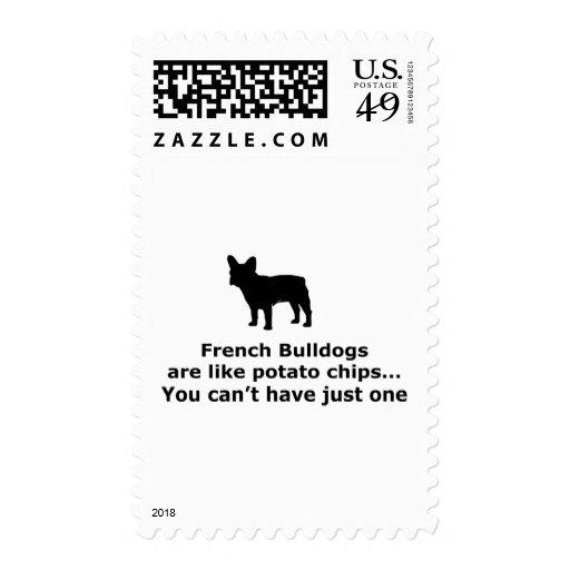 Los perros de Bull del francés son como las Franqueo