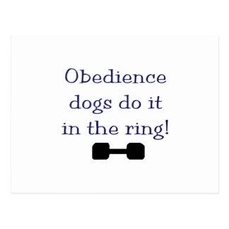Los perros de la obediencia lo hacen en el anillo postal