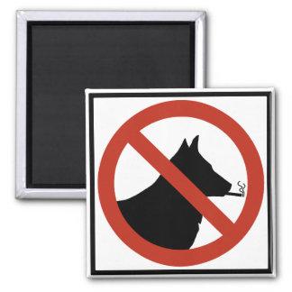 Los perros de no fumadores permitieron la muestra  imán cuadrado