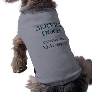 Los perros del servicio vienen en todos los prenda mascota