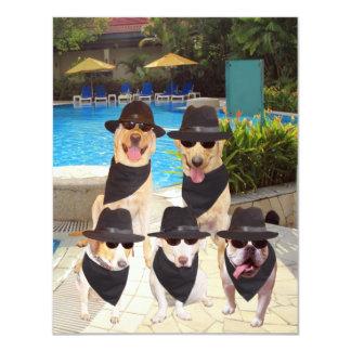 Los perros divertidos adaptables/laboratorio de invitación 10,8 x 13,9 cm