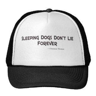 Los perros el dormir no mienten para siempre gorras de camionero