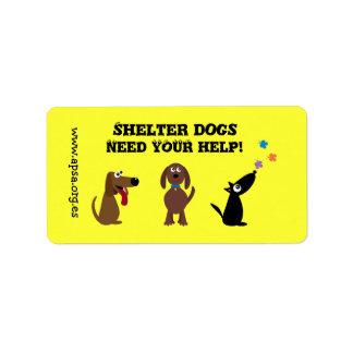 Los perros lindos del refugio necesitan su caridad etiquetas de dirección