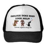Los perros lindos del refugio necesitan su caridad gorras de camionero