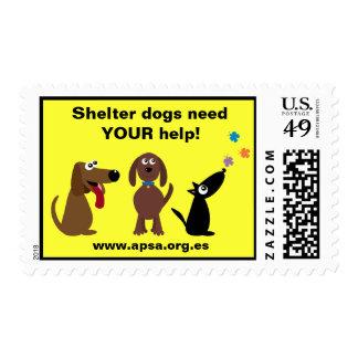 Los perros lindos del refugio necesitan su caridad sello