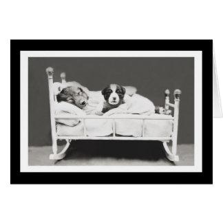 Los perros lindos el dormir del corredor de cross tarjeta de felicitación