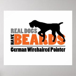 Los perros reales tienen barbas - indicador póster