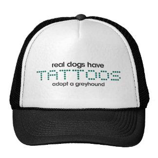 Los perros reales tienen tatuajes gorros