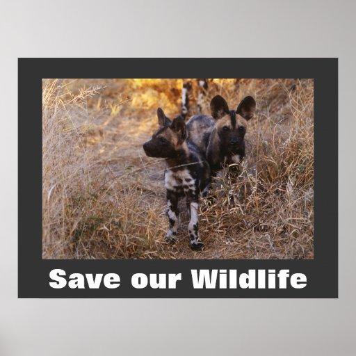 Los perros salvajes ahorran nuestro poster de la f