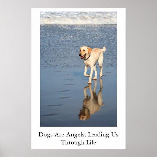 Los perros son ángeles poster