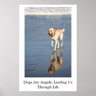Los perros son ángeles póster