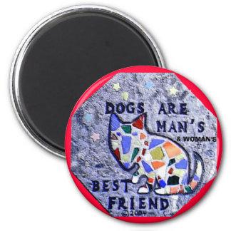 Los perros son imán del mejor amigo del hombre y d