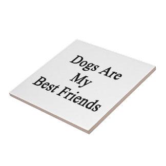Los perros son mis mejores amigos teja cerámica