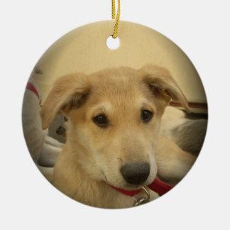 Los perros y los perritos lindos sirven el segundo adorno navideño redondo de cerámica