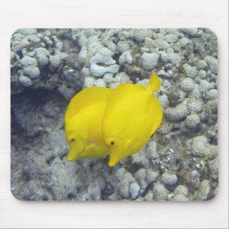 Los pescados amarillos de Tang Mouse Pads