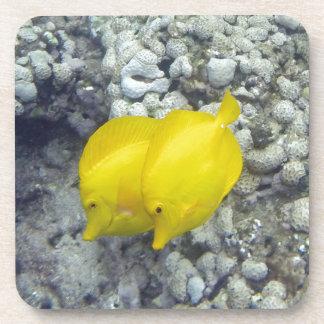 Los pescados amarillos de Tang Posavasos De Bebidas