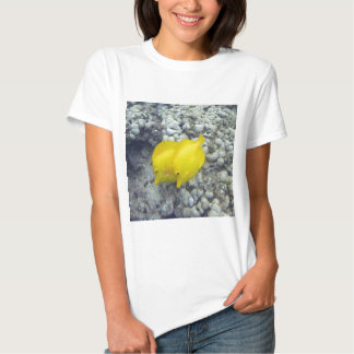 Los pescados amarillos de Tang Remera