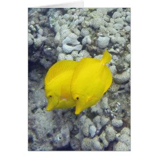 Los pescados amarillos de Tang Tarjeta De Felicitación