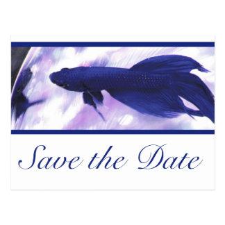 Los pescados azules de Betta ahorran la fecha Tarjetas Postales
