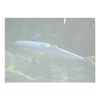 """Los pescados grandes en la vida marina parquean, invitación 5"""" x 7"""""""