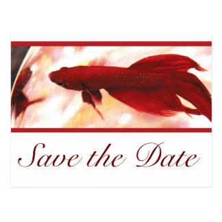 Los pescados rojos de Betta ahorran la fecha Postal