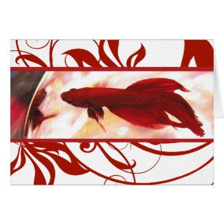 Los pescados rojos de Betta le agradecen cardar Felicitaciones