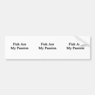 Los pescados son mi pasión pegatina de parachoque