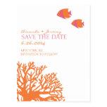Los pescados tropicales anaranjados y rosados ahor postales