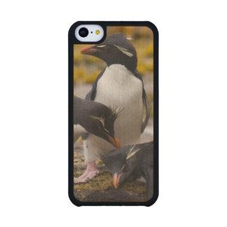 Los pingüinos de Rockhopper comunican con uno a Funda De iPhone 5C Slim Arce