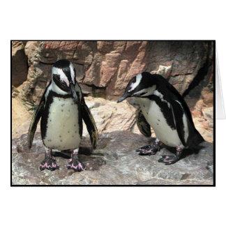 Los pingüinos le agradecen tarjeta pequeña