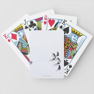 Los pingüinos que juegan a fútbol barajas de cartas