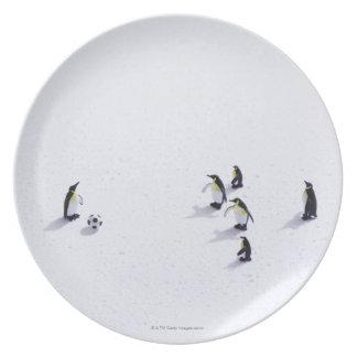 Los pingüinos que juegan a fútbol platos