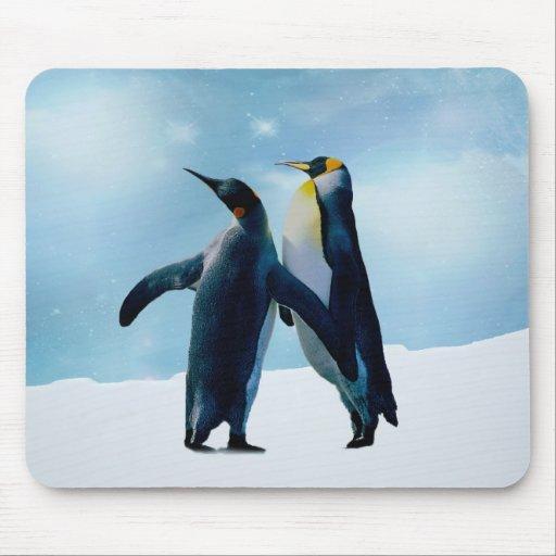 Los pingüinos viven y dejan vivo alfombrillas de raton