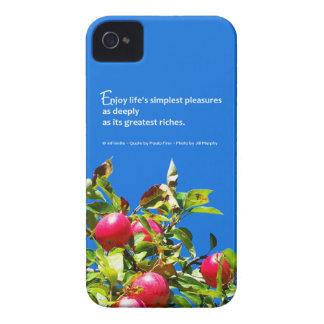 Los placeres más simples de la vida… iPhone 4 protectores