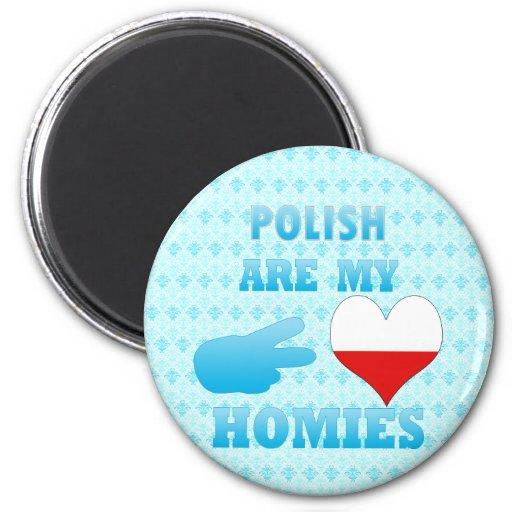 los polishs son mi Homies Imán De Frigorífico