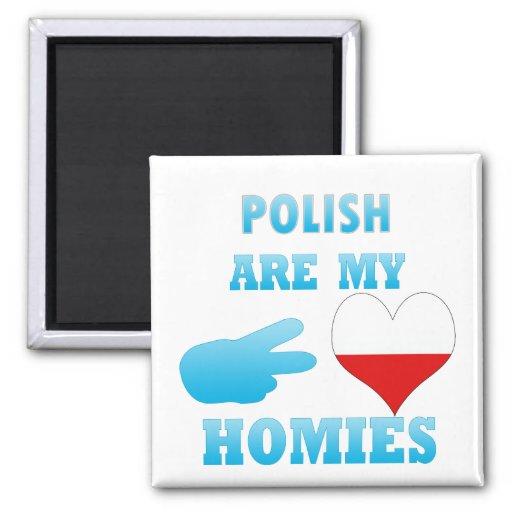 los polishs son mi Homies Imanes Para Frigoríficos