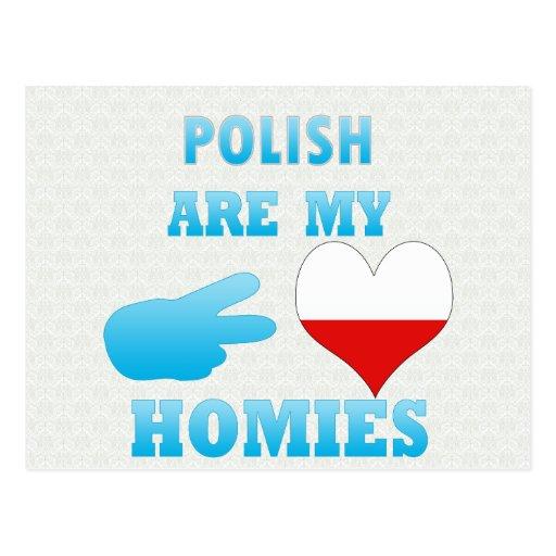 los polishs son mi Homies Tarjetas Postales