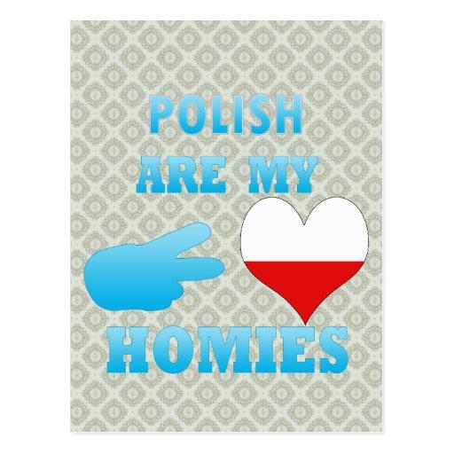 los polishs son mi Homies Postal
