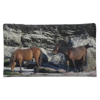 Los potros del sur de Dartmoor de la playa dos de