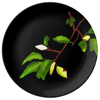 Los principios de la placa elegante de la platos de cerámica