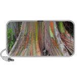 Los productos del árbol de eucalipto del arco iris notebook altavoces