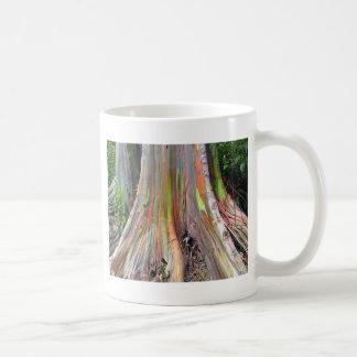Los productos del árbol de eucalipto del arco iris taza