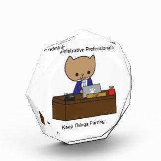 Los profesionales administrativos guardan cosas el