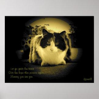 Los ratones son Haiku del gatito del agujero del