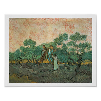 Los recogedores verdes olivas, Santo-Remy, 1889 (a Poster