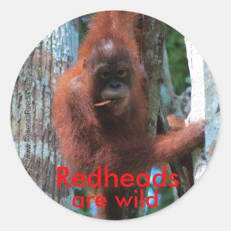 Los redheads del orangután son salvajes pegatina redonda