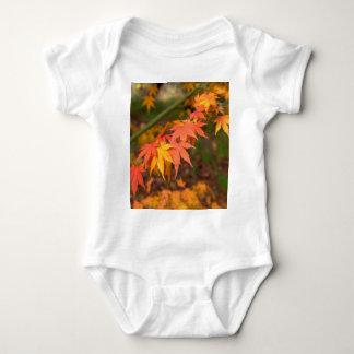 Los regalos en caída colorean productos múltiples camisas