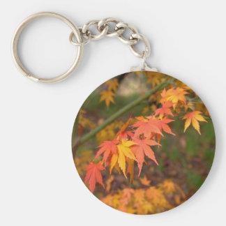 Los regalos en caída colorean productos múltiples llavero redondo tipo pin